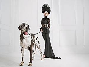 Fonds d'écran Chien Les robes Dalmatien Animaux