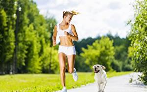 Desktop hintergrundbilder Hunde Golden Retriever Weg Bokeh Laufsport Blondine Shorts Sport Mädchens