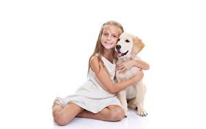 Hintergrundbilder Hunde Weißer hintergrund Kleine Mädchen Sitzend Starren Retriever Umarmt Kinder Tiere