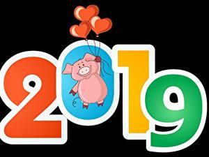 Hintergrundbilder Hausschwein Schwarzer Hintergrund 2019 Luftballons Herz