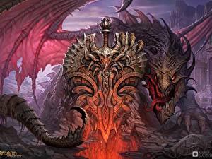 Bilder Drache Dragon Eternity Fantasy