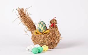 Hintergrundbilder Ostern Haushuhn Weißer hintergrund Ei Lebensmittel