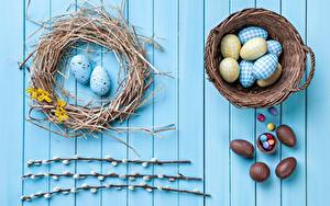 Fotos Ostern Schokolade Eier Weidenkorb Nest Bretter Ast