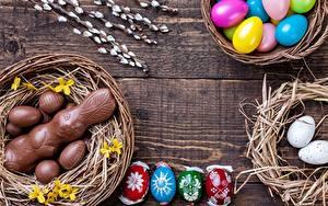 Fotos Ostern Schokolade Hasen Eier Nest das Essen