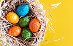 Hintergrundbilder Ostern Farbigen hintergrund Nest Eier Bunte das Essen