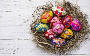Bilder Ostern Ei Nest