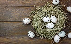 Hintergrundbilder Ostern Ei Nest Bretter