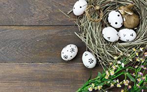 Bilder Ostern Ei Nest Bretter Vorlage Grußkarte