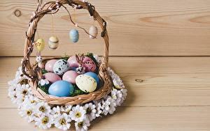 Fotos Ostern Ei Weidenkorb
