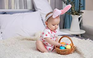 Bilder Ostern Ei Weidenkorb Baby Kinder