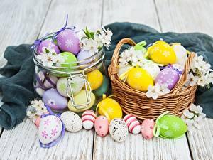 Fotos Ostern Eier Weidenkorb Weckglas Bretter