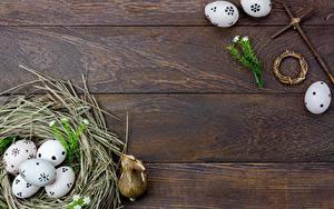 Fotos Ostern Nest Bretter Ei Vorlage Grußkarte