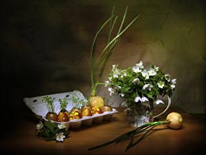 Fotos Ostern Zwiebel Stillleben Windröschen Eier Das Essen Blumen