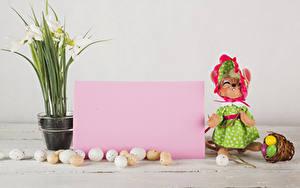 Bilder Ostern Schneeglöckchen Katze Ei Vorlage Grußkarte Blatt Papier Kleid Weidenkorb