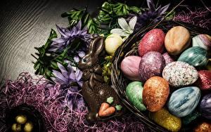 Hintergrundbilder Ostern Süßware Schokolade Kaninchen Ei