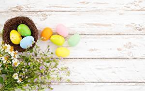 Fotos Ostern Vorlage Grußkarte Bretter Eier Nest