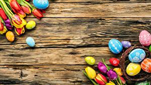 Hintergrundbilder Ostern Tulpen Bretter Eier Mehrfarbige Blumen