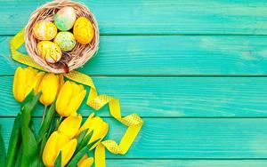 Bilder Ostern Tulpen Bretter Eier Nest Gelb Vorlage Grußkarte Blüte