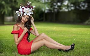 Bilder Sitzt Gras Kleid Bein Kranz Starren Elle junge Frauen