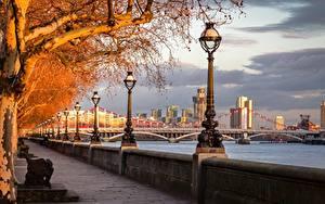 Bilder England Herbst Fluss Brücken London Waterfront Straßenlaterne Bäume River Thames, Chelsea Bridge