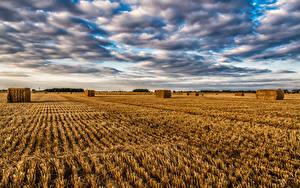 Fotos England Acker Himmel Wolke Stroh