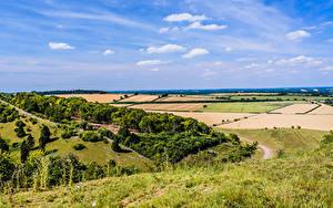 Fotos England Felder Himmel Gras Bäume Kingsclere