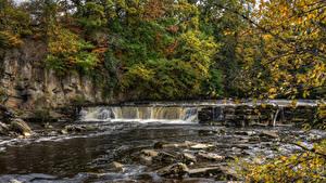 Fotos England Park Herbst Wasserfall Steine Ast HDRI Richmond Natur