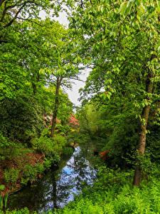 Hintergrundbilder England Parks Fluss Bäume Gras Ramster Gardens Surrey
