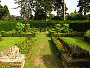 Bilder England Park Skulpturen Löwe London Design Strauch Rasen Capel Manor Gardens Natur