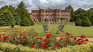 Desktop hintergrundbilder England Mohnblumen Park Haus Rosen Design Sessel Strauch Rasen Hughenden Manor Park Natur Blumen