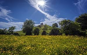 Bilder England Himmel Grünland Gras Sonne Burrow Mump Burrowbridge Somerset
