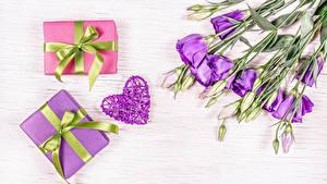 Bilder Eustoma Violett Knospe Geschenke Herz Schleife Blumen