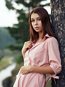 Bilder Braune Haare Kleid Blick Evgeniy Bulatov, Lada junge Frauen