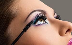 Bilder Wimper Nahaufnahme Model Gesicht Make Up junge Frauen