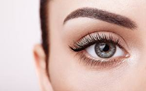 Hintergrundbilder Augen Wimper Hautnah Schminke Schön eyebrows Mädchens