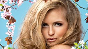 Hintergrundbilder Gesicht Blond Mädchen Blick Haar Dunkelbraun junge Frauen