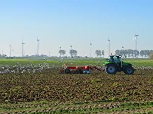 Bilder Acker Vogel Möwe Traktoren Windkraftanlage