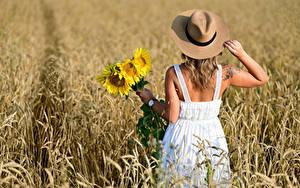 Bilder Acker Blumensträuße Sonnenblumen Blond Mädchen Kleid Der Hut Hinten Selina Mädchens