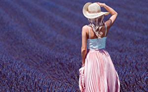 Desktop hintergrundbilder Acker Lavendel Hinten Der Hut Blondine junge frau