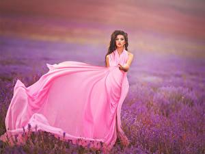 Fonds d'écran Champ Lavande Aux cheveux bruns Les robes Rose couleur Nature