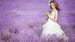 Bilder Acker Lavendel Braunhaarige Lächeln Braut Kleid Mädchens