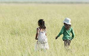 Fotos Felder Kleine Mädchen Bokeh 2 Hinten Der Hut Spaziergang Kinder