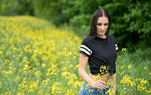 Bilder Acker Raps Brünette T-Shirt Shorts Unscharfer Hintergrund junge frau