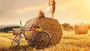 Bilder Felder Stroh Braune Haare Kleid Sitzen Fahrräder Pose