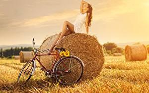 Bilder Felder Stroh Braune Haare Kleid Sitzen Fahrräder Pose junge frau