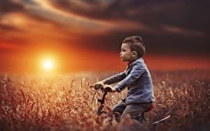 Bilder Felder Sonnenaufgänge und Sonnenuntergänge Junge Fahrrad Sonne Kinder