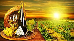 Fotos Acker Sonnenaufgänge und Sonnenuntergänge Wein Weintraube Käse Flasche Weinglas Der Hut