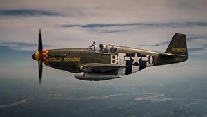 Bilder Jagdflugzeug Flugzeuge Flug Amerikanisches P-51 Mustang Luftfahrt