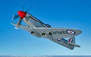 Bilder Jagdflugzeug Himmel Flugzeuge Flug Supermarine Spitfire FR XVIII Luftfahrt