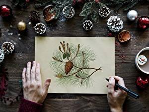 Hintergrundbilder Finger Neujahr Hand Blatt Papier Ast Kugeln Zapfen